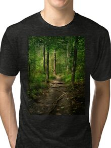 The Hidden Trails of the Old Forests Tri-blend T-Shirt