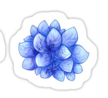 Floral Aesthetic Sticker