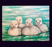 FOUR LITTLE BABY SWANS by PeterMaring