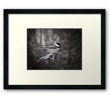 Chickadee In Snow Framed Print