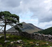 Mourne Country by Wrayzo