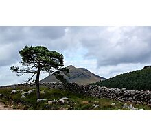 Mourne Country Photographic Print