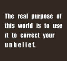 The real purpose of this world... by James Lewis Hamilton