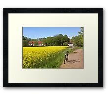 an amazing Sweden landscape Framed Print