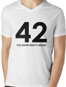 The meaning of life, the universe and everything Mens V-Neck T-Shirt