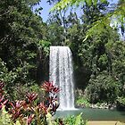 Mille Mille Falls Cairns Nth Queensland by mbutwell