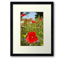 Wild Fields Framed Print