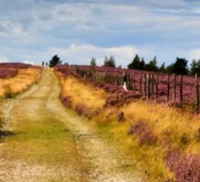 Walking on Rievaulx Moor Sticker