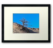 Bare in the Dunes Framed Print