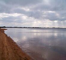 Sunshine On Napeague Bay by Dandelion Dilluvio