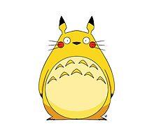 Totoro Pikachu Photographic Print