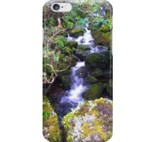 Mossy Stream iPhone Case/Skin