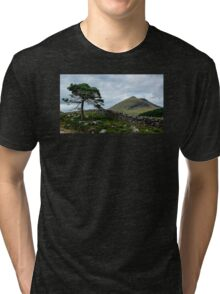 A Tree, On The Rocks Tri-blend T-Shirt