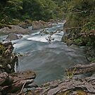Fiordland National Park by FASImages