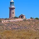 Ningaloo Lighthouse by Gary Wooldridge