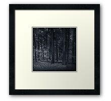 The Woodlands Ulriksdal Framed Print