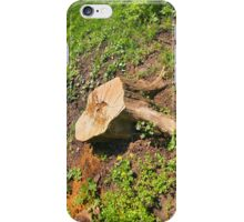 Stump of the cut tree on the edge of the forest iPhone Case/Skin