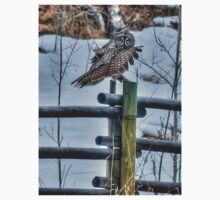 Great Grey Owl on a Ranch One Piece - Long Sleeve