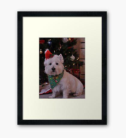 duncan waiting for santa Framed Print