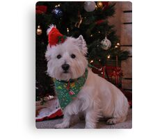 duncan waiting for santa Canvas Print