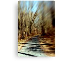 Pathway to Nowhere. Canvas Print