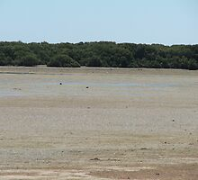 Low Tide by ScenerybyDesign