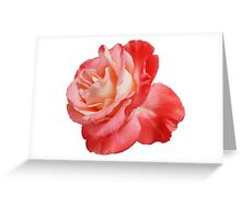Ombré Red Garden Rose II Greeting Card