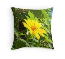 Belizean bloom Throw Pillow