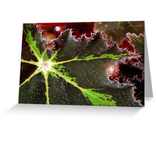 Red Mist at Dawn Greeting Card