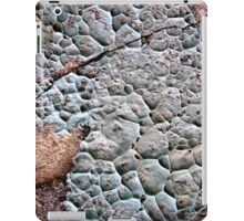 Puttycake iPad Case/Skin