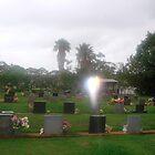 Wings of angel....Childers Lawn Cemetery...Queensland. by marieangel