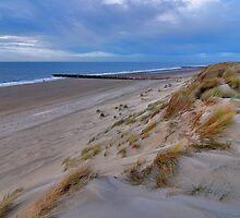 Dune and beach by Adri  Padmos
