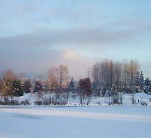 Frozen Lake by LinneaJean