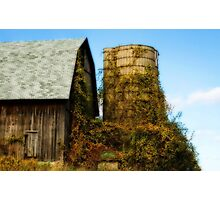 The over grown barn Photographic Print