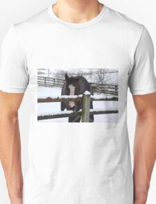Cold horse in the snow Unisex T-Shirt