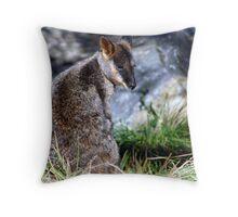 Wallaby in Victoria, Australia Throw Pillow