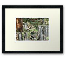 Trentham Falls..Victoria..Collage Framed Print