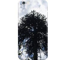 Monkey puzzle tree iPhone Case/Skin