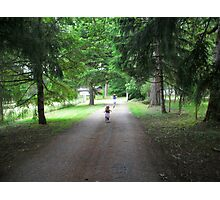 country driveway Photographic Print