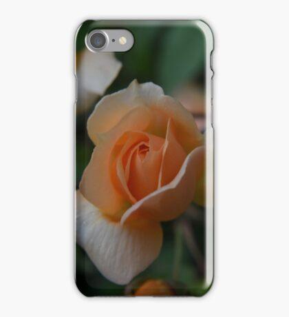 Miniture Rose iPhone Case/Skin