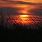 walney sunfall by kip13