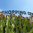 shopping center without stores by annet goetheer
