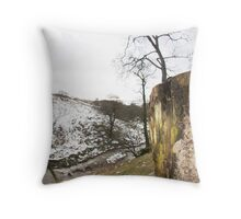 Plunge Brook -  Throw Pillow