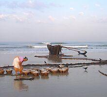 Morning catch, Colva, Goa by photoartindia