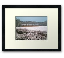 Snow-covered Framed Print