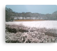 Snow-covered Metal Print