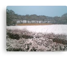 Snow-covered Canvas Print