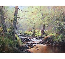 First Colour, Holystone, Northumberland Photographic Print