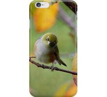 Silver Eye.......did you say something.....?? iPhone Case/Skin