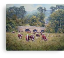 Longhorns at Pauperhaugh Bridge, Northumberlnad, England Canvas Print
